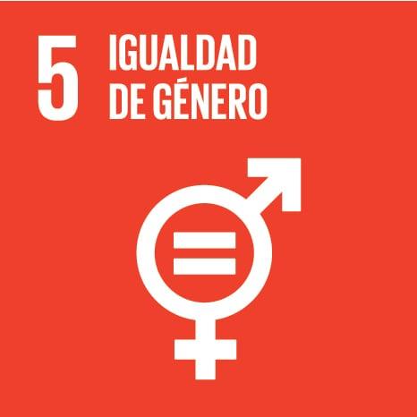 Icono ODS Igualdad de género